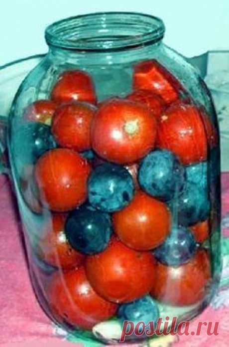 Помидоры с синими сливами - находка зимой. Рецепт под фото.  Ставьте Класс ✔, чтобы поделиться с друзьями и сохранить в своей ленте.  Помидоры с синими сливами - находка зимой  Давно пробовал такие помидоры. Взял даже рецептик. Но все время как - то было не этого!  А время сейчас именно то, когда помидоры и сливы ломятся на прилавках!  В помидорах, консервированных с синими сливами, получается весьма приятный маринад, вкусные помидоры с нежным ароматом слив. Рассол настоль...
