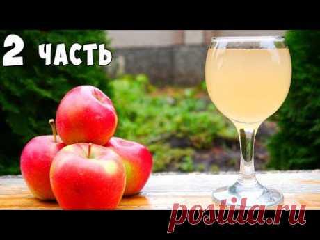 ВИНО из ЯБЛОК !!! Яблочное вино ПРОСТОЙ РЕЦЕПТ Часть 2