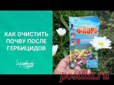 Как очистить почву после гербицидов