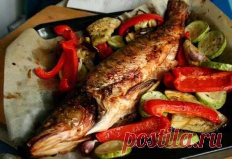 Несколько советов по приготовлению рыбы | Sultan Fishing! | Яндекс Дзен