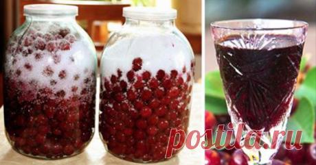 Как приготовить вишневый ликер из 3 ингредиентов. Способ, которым грех не воспользоваться в сезон