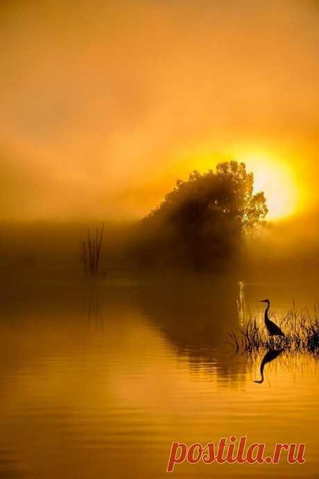 Провожая закат, мы живём ожиданием восхода...  © Владимир Высоцкий