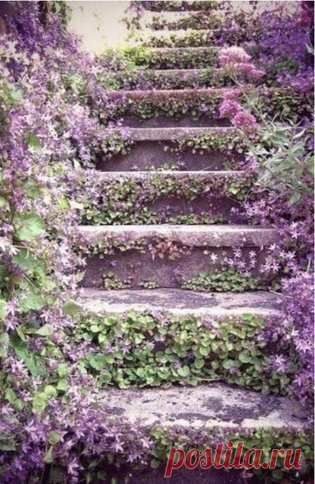 Оформление лестниц в саду. | Дачники