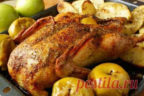 Утка запеченная в духовке: Утка с яблоками, утка в рукаве, утка по-пекински, утка в фольге, утка с апельсинами - лучшие рецепты