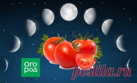 Выращиваем томаты по Лунному календарю в 2019 году
