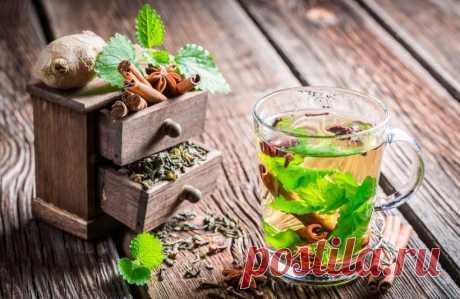 Чай с бадьяном — рецепт: как заваривать и какие полезные свойства