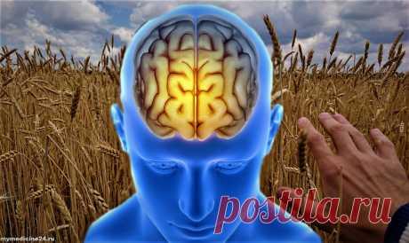 Улучшаем мозговое кровообращение с помощью травяного отвара | Моя медицина | Яндекс Дзен