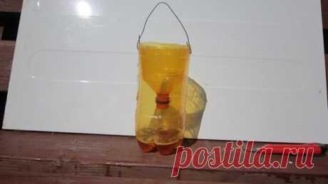 Пластиковая бутылка - поймает всех насекомых-вредителей в саду и на даче | Любимая Дача | Яндекс Дзен