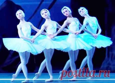 П. И. Чайковский - Танец маленьких лебедей. Русская классика   Сказочник   Яндекс Дзен