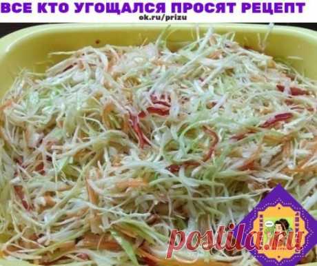 Наивкуснейшая капустка Делаю эту капустку не первый год. Все кто угощался просят рецепт. Попробуйте не пожалеете. Ингредиенты: Капуста белокочанная / Капустa — 3 кг Лук репчатый — 500 г Морковь — 500 г Перец болгарский — 500 г Сахар — 175 г Соль ((ложки полные с горкой)) — 2 ст. л. Масло растительное — 250 мл Уксус (9%) — 250 мл Фотография Готовим все ингредиенты. Лук режем полукольцами. Морковь шинкует на крупной терке (можно тереть как для корейской морковки будет красивее). Болгарский перец