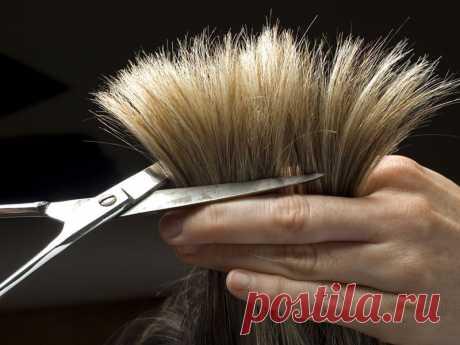 Как избавиться от секущихся кончиков волос в домашних условиях?