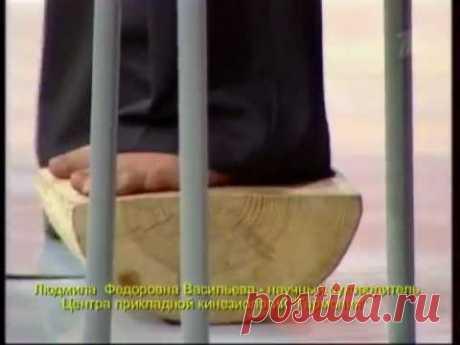 Кинезиология. проф. Васильева Л.Ф.