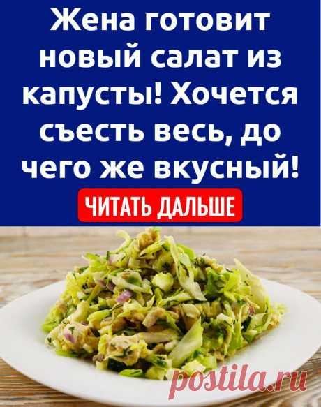 Жена готовит новый салат из капусты! Хочется съесть весь, до чего же вкусный!