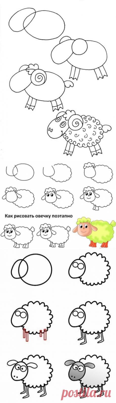 Как нарисовать овечку - Поделки с детьми | Деткиподелки
