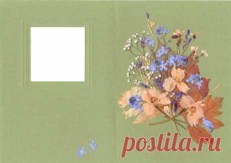 Мастер-класс смотреть онлайн: Создание открыточки в технике «Прессованная флористика» | Журнал Ярмарки Мастеров