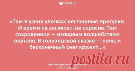 """Роман """"Тим и мельница"""""""
