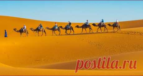 Marrakech Excursion | Desert Tour From Marrakech | Sunny Excursion
