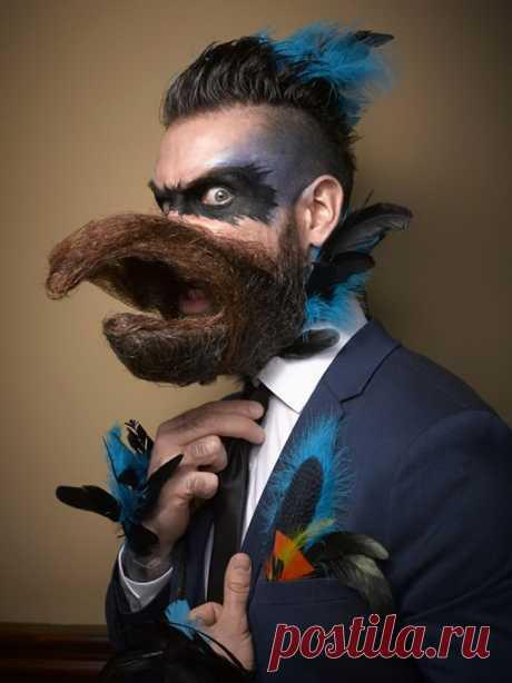 Победители чемпионата бород 2016 года / Люди / Funtema — развлекательная сеть