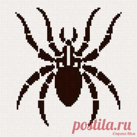 Пуловер с пауком (спицы) - Вязание - Страна Мам