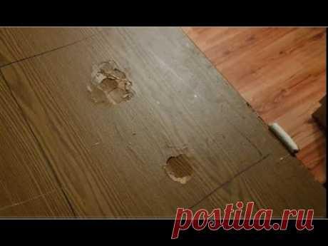 Восстановление поврежденной поверхности межкомнатной двери        ( часть первая )