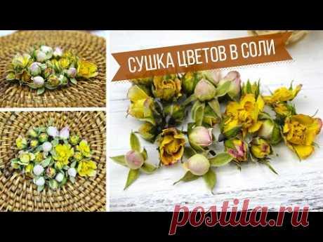 Любимый способ! Объемная сушка цветов в домашних условиях / Засушиваю бутоны роз в соли