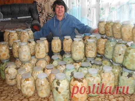 Бабушкины рецепты засолки груздей