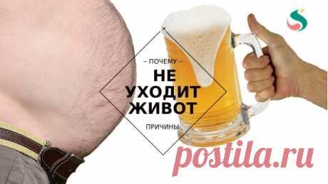 Диета и потеря веса: причины, по которым вы не теряете живот ~ SLOVESA - журнал о развитии