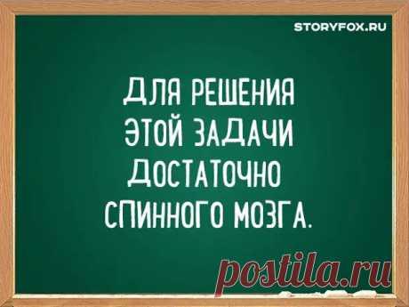 Смешные перлы преподавателей ВУЗов - ЭпиЦентр позитива - медиаплатформа МирТесен