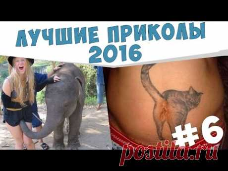 ПРИКОЛЫ №6 Подборка приколов Май 2016 Смешные видео - YouTube