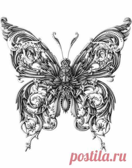 (+1) тема - Фантастически красивые рисунки насекомых | СВОИМИ РУКАМИ