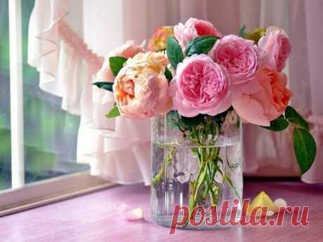 Как продлить жизнь цветов в вазе Актуально на 8 марта Как продлить жизнь цветов в вазе Розы. Первое что нужно сделать, это... Читай дальше на сайте. Жми подробнее ➡