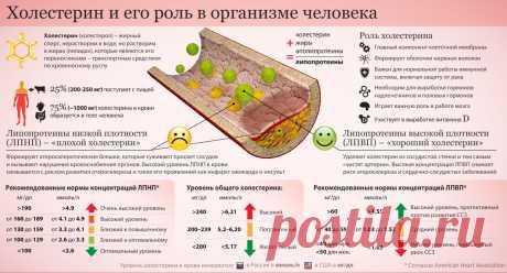 Холестерин. Kрупнейшая афера XX века - Jivoy — КОНТ