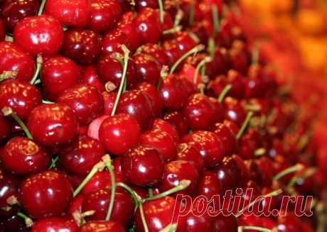 Мои любимые рецепты: Варенье из вишни