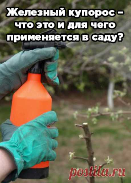 Iron vitriol – that it and what it is applied in a garden to?