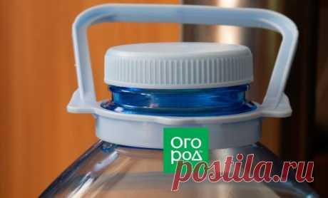7 способов применения 5-литровых пластиковых бутылок на даче | Полезно (Огород.ru)