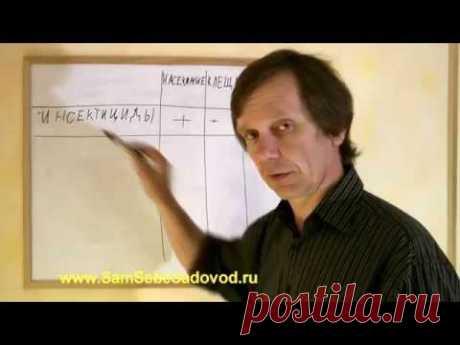Что нужно знать о садовой химии - YouTube