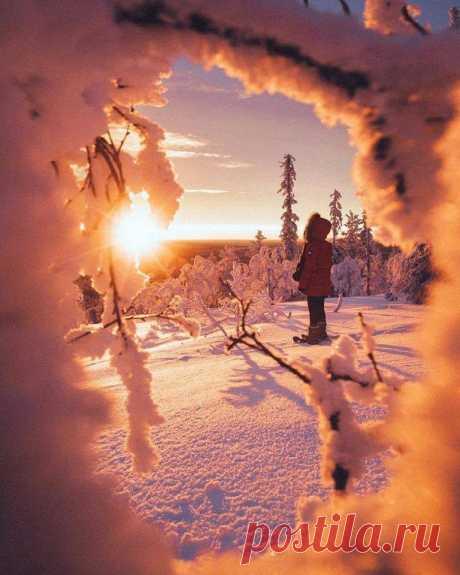 Удивительно, что может сделать один луч солнца с душой человека. Ф.М. Достоевский