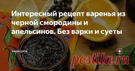 Интересный рецепт варенья из черной смородины и апельсинов. Без варки и суеты В прошлом году я сделала пару банок на пробу – и нынче решила несколько баночек припасти. Варенье это зимой – просто кладезь витамина С, и, благодаря тому, что оно не подвергается термической обработке, все витаминчики остаются целыми и невредимыми. В сезон простуд это ароматное лакомство будет как нельзя кстати.