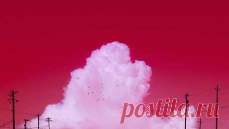 Вот как бы выглядел мир, если бы все вокруг было розовым Ну крутой же цвет!