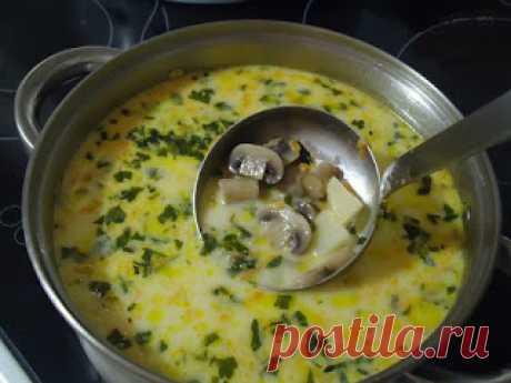 Самые вкусные рецепты: Сырный суп с грибами