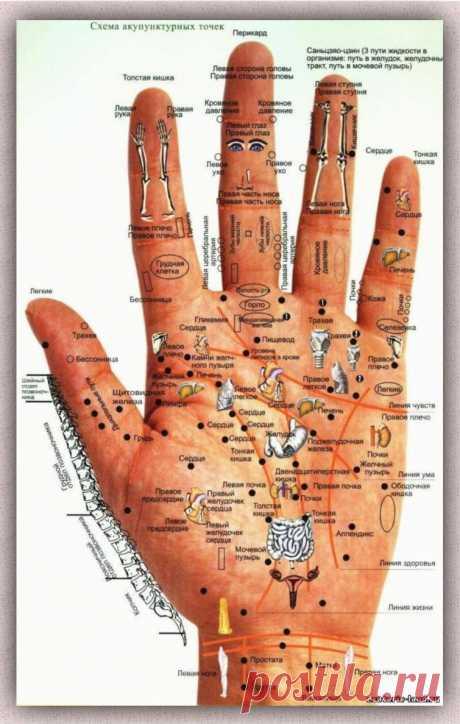 """При помощи массажа можно восстанавливать силы, """"бороться"""" с плохим состояниема, все это было ещё известно  в глубокой древности. Что именно представляет собой такой массаж и какой терапевтический эффект удается достичь с его помощью?!"""