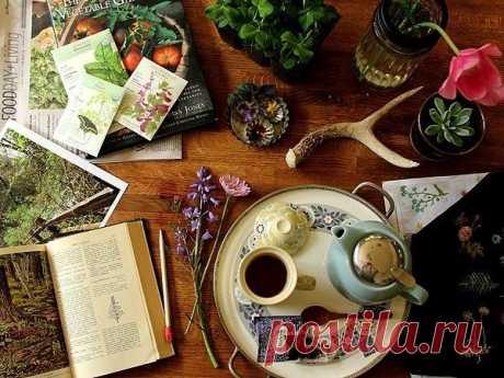 Аюрведический чай для Ваты: рецепты приготовления напитков Аюрведический чай для Ваты, какие напитки можно употреблять людям с Дошей Вата? Рецепты напитков, особенности употребления. Советы по питанию для Ваты.