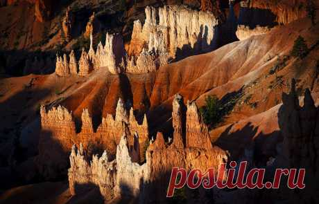 Flaming Hoodoos The early morning sun first strikes these Hoodoos at Sunrise Point, Bryce Canyon