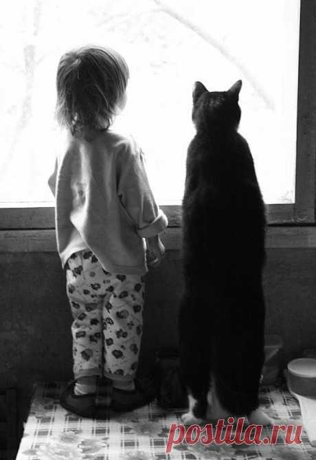 Почти Рождественская история. Алло, это бюро находок? – спросил детский голосок. – Да, малыш. Ты что-то потерял? – Я маму потерял. Она не у вас? – А какая она твоя мама? – Она красивая и добрая. И еще она очень любит кошек. – Да, как раз вчера мы нашли одну маму, может быть это твоя. Ты откуда звонишь? – Из детского дома №3. – Хорошо, мы отправим твою маму к тебе в детский дом. Жди.