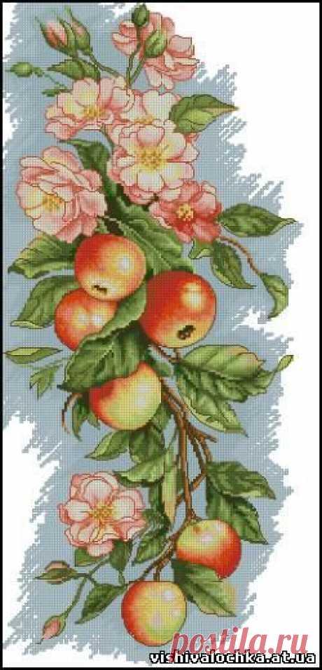 Панелька с яблоками - Фрукты, Овощи, Натюрморт - Флора - СХЕМЫ - ВЫШИВКА КРЕСТОМ