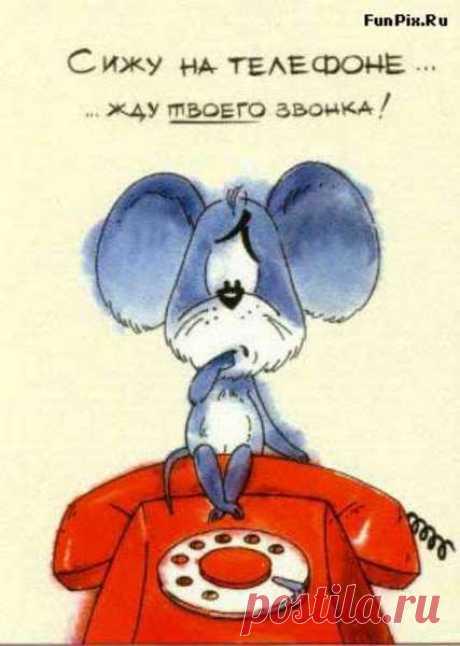Галина Плохих
