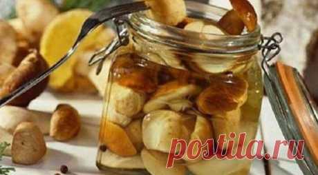 Маринад для любых грибов – настоящая находка для хозяек Этот маринад делает грибочки очень вкусными и пикантными. Готовится маринад легко и просто – сохраните себе рецепт и он станет настоящей находкой. Основные ингредиенты: Вода – 1 литр Сахар – 2 столовых ложки Соль – 4 чайных ложки Лавровый лист – 3 штуки Душистый перец горошком – 6...