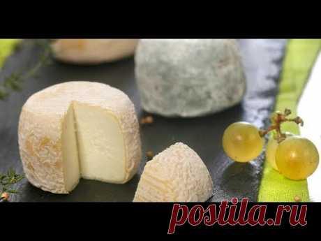 Французский сыр Кроттен/Из козьего молока/Пошаговый рецепт