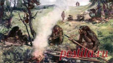 Древние люди спали не только с неандертальцами. | Fraid | Яндекс Дзен