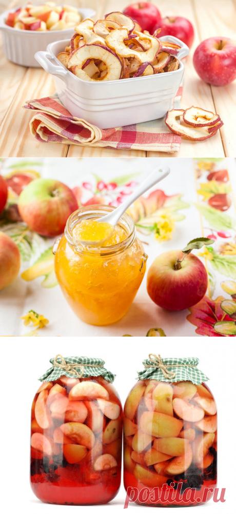Яблоки на зиму: 12 беспроигрышных способов заготовки